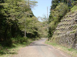 その先の旧道